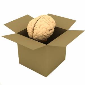Hjernen i boks
