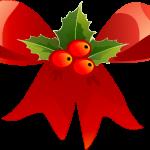 Juleblomst