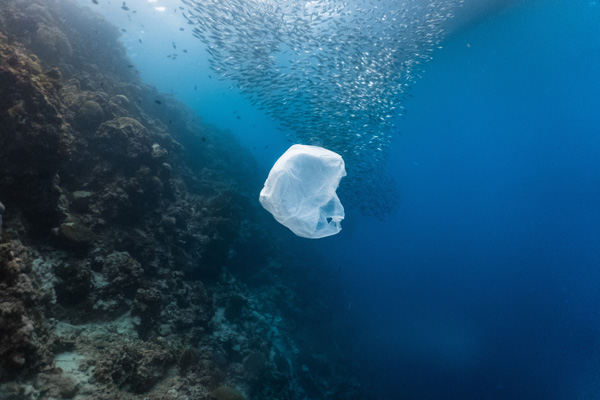 Regler for tydelig merking av enkelte plastprodukter skal bidra til å redusere forsøpling